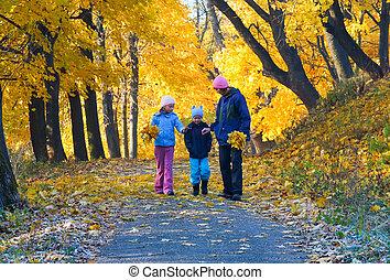 가족, 에서, 가을, 단풍나무, 공원