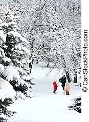 가족, 에서, 겨울, 공원