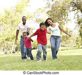 가족, 즐기, 안에 들어가라, 공원