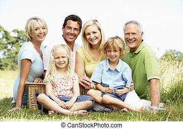 가족, 픽크닉을 있는, 에서, 시골