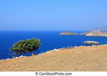 감동되지 않은, 자연, crete, 그리스