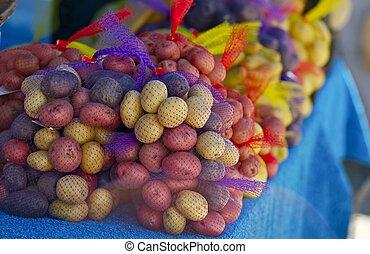 감자, 유기체의, 다채로운