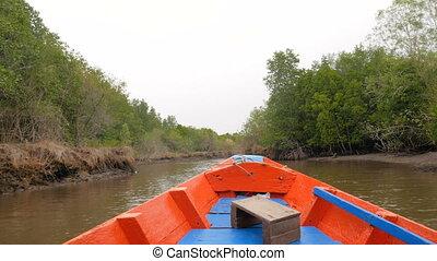 강어귀, 자연, 보이는 상태, 환경, 이동, 거의, 바다, 앞으로, mangrove, 강, 보존해라, 보트,...