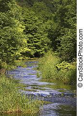 강, 흐르는 것