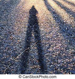 개념의, 사진, 의, 남자의 것, shadow.