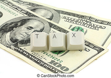 개념, 의, 세금