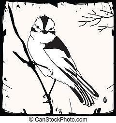 거의, 새, 삽화