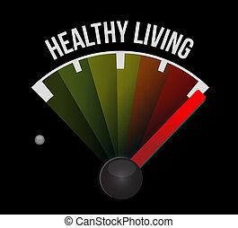 건강한 생존, 개념, 미터, 표시
