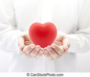 건강, 개념, 사랑, 보험, 또는