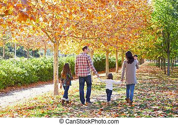 걷고 있는 가구, 에서, 자형의 것, 가을, 공원