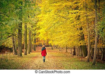 걷기, 에서, 그만큼, 가을, 공원