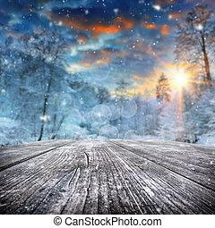 겨울의 풍경, 와, 덮는눈, 숲