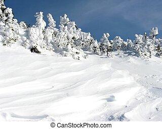겨울, 눈, 은 편류한다