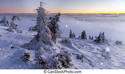 겨울, 에서, 시골
