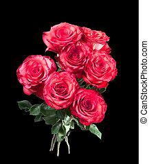 고립된, 꽃다발, 의, 빨간 장미, 통하고 있는, 그만큼, 검은 배경