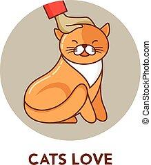 고양이, -, 벡터, 아이콘, 와..., 삽화