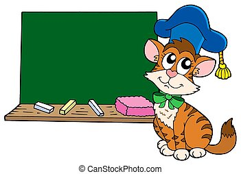 고양이, 선생님, 와, 칠판