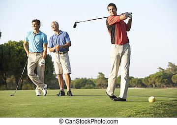 골퍼, 그룹, 과정, 떨어져 티 위에 올려놓는, 남성, 골프