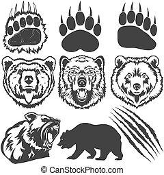 곰, 발자국, 와, 집게발, 은 긁는다, 벡터