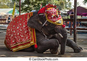 공상, 코끼리