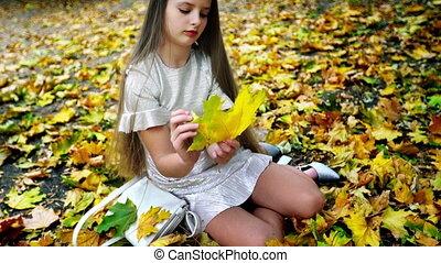공원, 다만 ...만, 뿐, 가을, 걷기, 키드 구두, 학교, 안전
