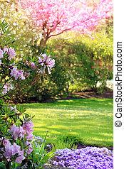 공원, 에서, 봄