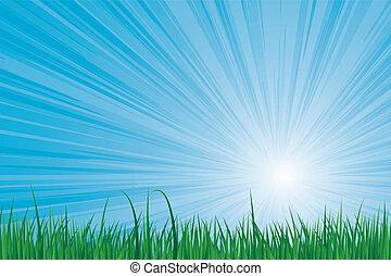 구름 사이부터 날렵하게 쪼일 수 있는 일광, 녹색 잔디