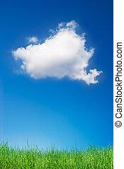 구름, 와..., 풀