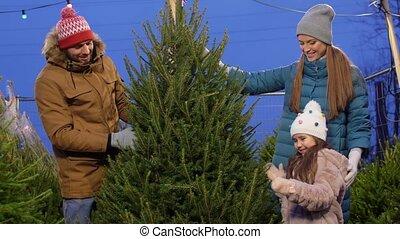 구입, 시장, 행복하다, 나무, 가족 크리스마스