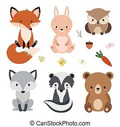 귀여운, 세트, 동물, 삼림지, 고립된, 배경., 백색