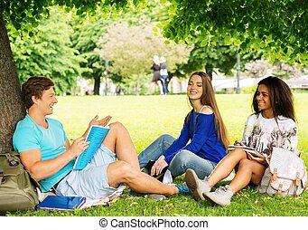 그룹, 의, 소수민족의 멀티, 학생, 에서, a, 도시 공원