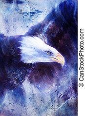 그림, 독수리, 통하고 있는, 떼어내다, 배경, 날개, 난다, 미국, 상징, freedom., 포도 수확, 스타일, 그림
