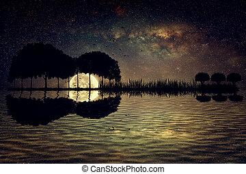 기타, 섬, 달빛