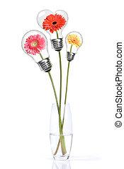 꽃다발, 에서, daisy-gerbera, 와, 머리, 내부, 램프, 고립된, 백색 위에서