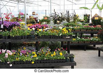 꽃, 보육실