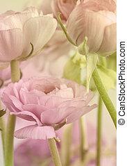 꽃, 예술, design., 결혼식, 휴일, 카드