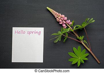 꽃, spring., 봄, paper., 검은 배경, 공백, 여보세요