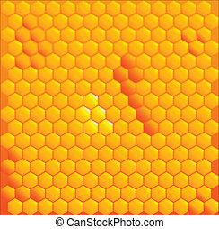 꿀, 세포
