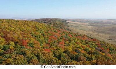 나는 듯이 빠른, 수펄, 이상, 가을 숲