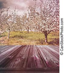 나무로 되는 판자, 와, 사과 과수원, 에서, 배경