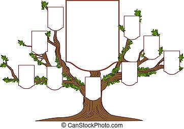 나무, 가족