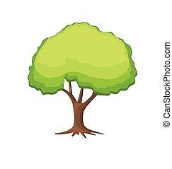 나무, 벡터