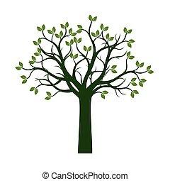 나무., 봄, 벡터, 녹색, illustration.