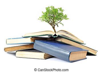 나무, 성장하는, 에서, 책
