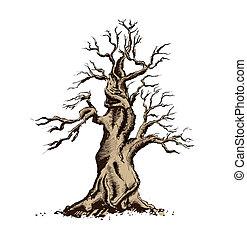 나무, 실루엣, 벡터, illustration., 분재, 예술