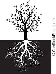 나무, 실루엣, 와, 뿌리