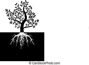 나무, 실루엣