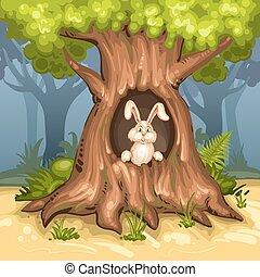 나무, 토끼, 우묵한