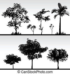 나무, 풀, 실루엣