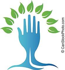 나무., eco, 상징, 손, 벡터, 녹색, 로고